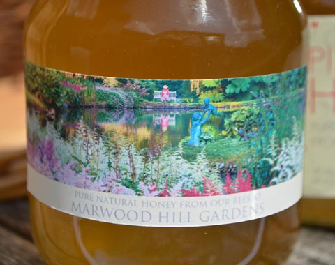 Marwood Honey
